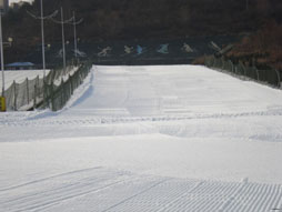 欢乐雪世界图片