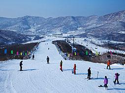 何家沟滑雪场图片