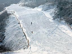 林海滑雪场图片